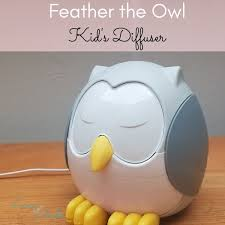 Feather The Owl Kid S Diffuser Demo Review
