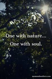 quotes tools and inspiration for your soul mother nature