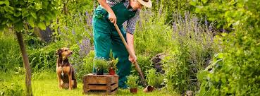 ing on your plants flower garden