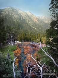 Kaleidoscopic Spring Outflow - Iva Bell Hot Springs - Sierra Photograph by  Bruce Lemons