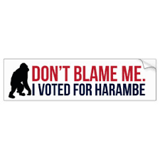 Harambe Bumper Stickers Decals Car Magnets Zazzle