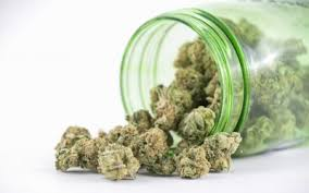 Home | Herb Dispatch | Cannabis Wholesale Marketplace