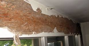 checking structure after termite damage