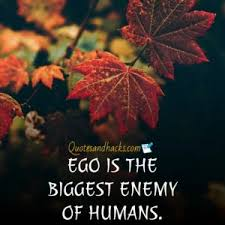 ego quotes archives quotes and hacks