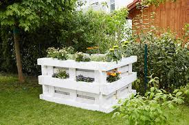 flowering plants in diy raised bed made