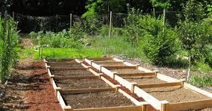 Greenes Fence 4 Ft X 4 Ft X 7 In Original Cedar Raised Garden Bed Rc 4c4 With Images Garden Beds Raised Garden Beds