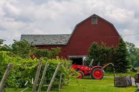 Becker Farms still evolving after more than a century in business |  Lifestyles | niagara-gazette.com