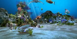 amazing aquarium wallpapers top free