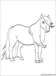 Kleurplaat Met Pony Gratis Kleurplaten