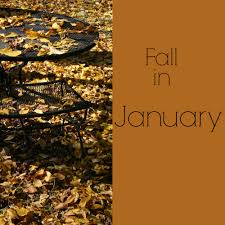 It feels like fall.. in the middle of January!