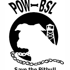 Pow Pitbull Black And White Vinyl Sticker