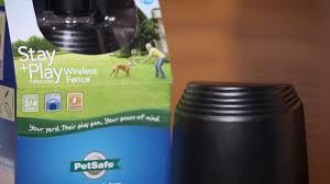 Petsafe Stay Play Wireless Pet Fence Dog Fence Systems Petsmart