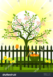 Vector Flowering Tree Picket Fence Daffodils Stock Vector Royalty Free 74115490