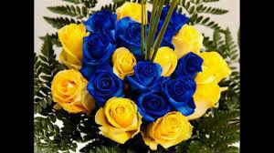 ازهار وورود فائقة الجمال اتحدى ان تكون قد شاهدت مثلها من قبل مع