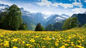beautiful scene hd natural scenery