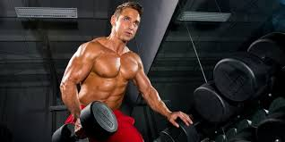 shredding workout cycle and t