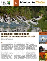 Read about birds migrations, mountain goats and the MK Nature Center in  'Windows to Wildlife' | Idaho Fish and Game