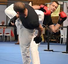 nihon jitsu self défense yama no