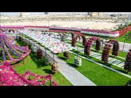 dubai miracle garden you