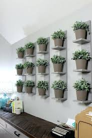 indoor plant wall jacobthedesigner co
