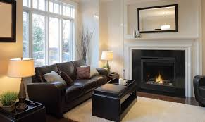 napoleon b36 direct vent gas fireplace