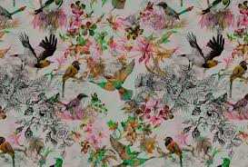 walls by patel wallpaper funky birds