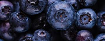 wine recipe how to make blueberry wine