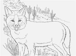 baby fox coloring pages pics awesome