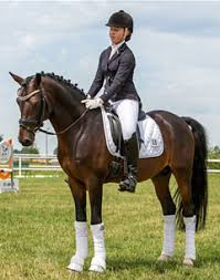 Finalists Announced for 2015 German Developing Pony Rider Championship