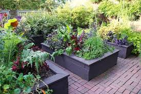raised wooden planters garden beds