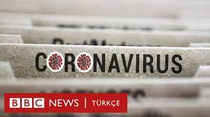 Koronavirüs hakkında 5 önemli bilgi - BBC News Türkçe