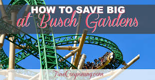 how to save big at busch gardens tampa