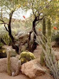 desert garden bay area artistic