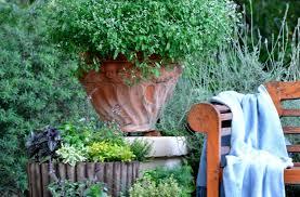 small garden ideas growing herbs in