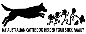 My Australian Cattle Dog Herded Your Stick Family