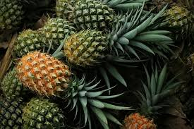 pineapple, fruit, food, food and drink, healthy eating, freshness ...