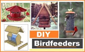 bird feeder plans for beginners and