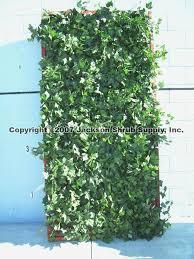 Jackson Shrub Lattice Redwood with Green Ivy 4' x 8' lattice ...