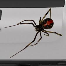 3d Spider Black Widow Realistic Tailgate Hood Window Decal Vehicle Truck Vinyl Ebay