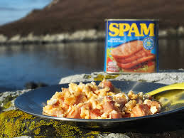 Image result for spam fritters