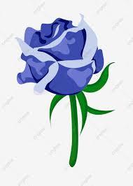 من ناحية رسم الفاوانيا الزهور الجميلة الزهور الزرقاء الزهور