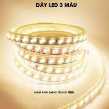 Đèn LED dây 3 Màu - Trắng + Vàng + Trung Tính cao cấp