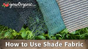 How To Use Shade Fabric Protect Your Plants From The Extreme Summer Heat Youtube