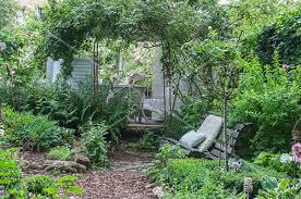 antique garden bench in front of rose