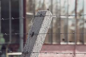 Barbed Wire Fence Post Free Photo On Pixabay