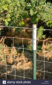 Metal Fence Post With Wire Stock Photo Alamy