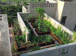 scape your roof with trees and plants