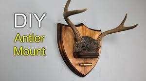 diy antler mount how to make you