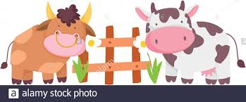 Farm Animals Bull And Cow Wooden Fence Flowers Cartoon Vector Illustration Stock Vector Image Art Alamy