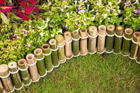 20 Inspirational Garden Flower Photos Cercas De Bambu Para Jardim Jardim De Bambu Jardim Diy